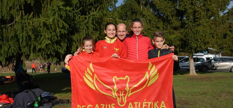Erős csapat, győzelmek, kiváló eredmények a mezei ligán!